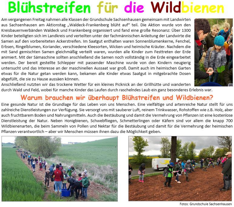 2019-05-Aktionstag-WA-FKB-blueht-auf-GS